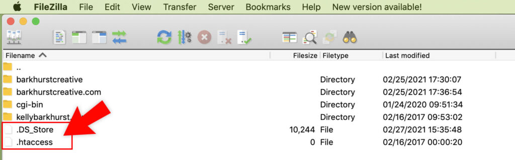 Example of a hidden file on your Mac being displayed in the FileZilla window.